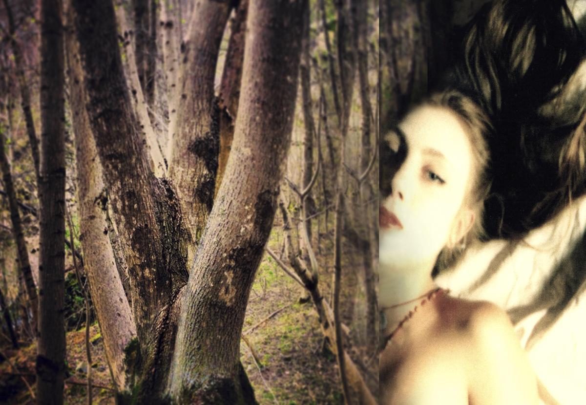 Wald der Frauen ©2015 Sonja Maria Schobinger